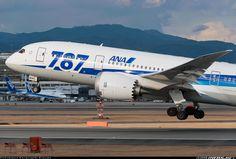 All Nippon Airways - ANA JA804A Boeing 787-881 Dreamliner