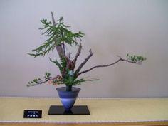 Ikenobo 100_0562