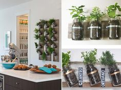 10 creativas ideas para armar jardines de interior |  Usa frascos para montar tu propia huerta en la cocina