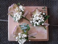 The ladies Buttonholes of 'Amnesia' Roses with Gypsophila & Eucalyptus Two Roses, White Roses, Pink Hydrangea, Pink Flowers, Destination Wedding, Wedding Planning, Hand Tied Bouquet, Gypsophila, Blooming Flowers
