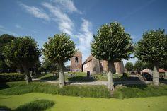 Warft (mound), Critzum, near Jemgum, Rheiderland, East Friesland (DE)
