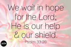 Psalm 33:20...He is our strength and our shield. Praise the Lord!