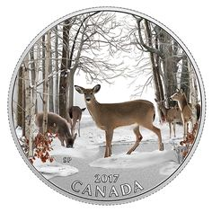 1/2 oz. Pure Silver Coloured Coin - Iconic Canada: Spring Sightings (2017)