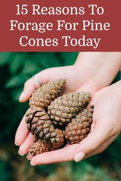Crafts To Make, Easy Crafts, Best Baked Potato, Christmas Crafts For Kids, Christmas Trees, Cool Art Projects, Pine Cone Crafts, Art N Craft, Diy Supplies