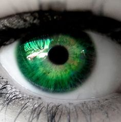 1000+ images about Ogen 2 on Pinterest Turquoise eye ...