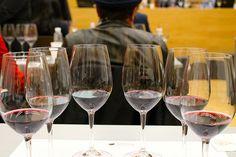 Aprendiendo a distinguir el rastro del roble en el sabor del vino...