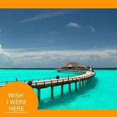 에메랄드 빛 라군 - 휴양지의 정석, 몰디브 #몰디브  #wishiwerehere #리얼몰디브 #여행