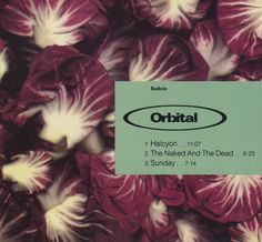 """For Sale - Orbital Halcyon UK  CD single (CD5 / 5"""") - See this and 250,000 other rare & vintage vinyl records, singles, LPs & CDs at http://eil.com"""