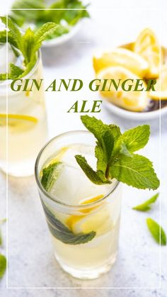 Light and fresh, this gin and ginger ale cocktail recipe is guaranteed to make you a gin lover! A little sweet and a little fizzy this easy on the alcohol drink deserves a spot at your next soiree! #gincocktails #cocktails Ginger Ale Cocktail, Ginger Mojito, Whiskey Ginger, Ginger Lemonade, Grapefruit Vodka, Tea Cocktails, Mojito Cocktail, Paloma Cocktail, Sweet Cocktails