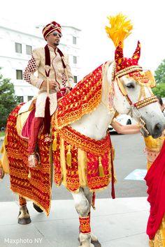 Handsome groom ridding horse for baraat http://www.maharaniweddings.com/gallery/photo/95437