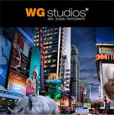 WG studios. Professional Web Design in Miami