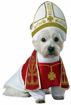 Holy Hound Dog Costume - Medium | EntirelyPets
