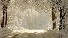 Wish it'd snow like this in Missouri!