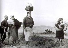 El 15 de gener de 1939 el fotògraf Robert Capa va fotografiar l'èxode de milers de republicans des de Tarragona cap al nord davant de l'arribada imminent de les tropes franquistes