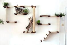 The Cat Mod Garden Complex par CatastrophiCreations sur Etsy