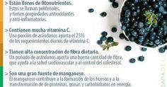 Los Arándanos beneficios y todo sobre estos frutos. | Batidos | Pinterest | Salud, Lima and Blueberries