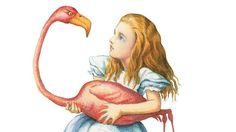 Alice and a Flamingo illustration