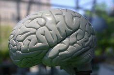 """MIP Maggio di Informazione Psicologica: Informazione come Prevenzione senza pregiudizi """" E' più facile spezzare un atomo che un pregiudizio""""sosteneva Einstein. Ora, sull'atomo non saprei... non ne frequento molti, ma spezzare un pre...  http://www.ilvostrobenessere.it/mip-maggio-di-informazione-psicologica/"""