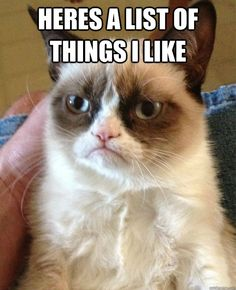Grumpy Cat!!!  This poor thing just makes me giggle. I wanna give him a hug!!