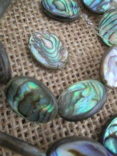 Oval Flat Abalone Beads 18 x 13 mm by janissupplies on Etsy