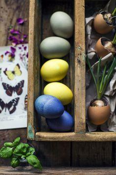 Naturally dyed eggs (Turmeric, Bilberries, Coffee) / Naturligt färgade Ägg - DIY… Egg Dye, Diy Cleaning Products, Turmeric, Home Remedies, Easter Eggs, Seasons, Vegetables, Halloween, Create