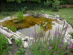 Zu Gast im Hortus Campanularum, dem Garten der Glockenblumen – Hortus Girasole Garden Bridge, Outdoor Structures, Insects, Insect Hotel
