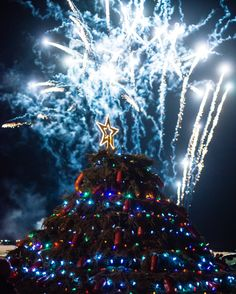 Lobster Pot Christmas Tree - lit during the Festival of Lights in Barrington Passage, NS. Come see this unique Christmas Tree during the month of December! Made completely from Lobster Traps!