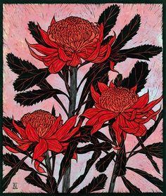 Three Waratahs 53 x cm Edition of 16 Reduction linocut on handmade Japanese paper Edition sold out Australian Native Flowers, Australian Art, Plant Illustration, Botanical Illustration, Flannel Flower, Linocut Prints, Botanical Art, Female Art, Flower Art
