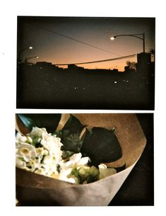 Disposable Camera / Recent Photographs : Morning Gradient and Flowers . Film Aesthetic, Retro Aesthetic, Aesthetic Photo, Aesthetic Pictures, Film Pictures, Polaroid Pictures, Auras, Camera Photography, Wall Collage