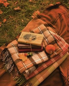 Fall Pictures, Fall Photos, Autumn Aesthetic, Autumn Cozy, Best Seasons, Hello Autumn, Autumn Inspiration, Happy Fall, Fall Halloween