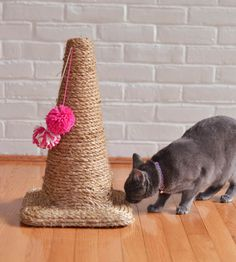rascadores-para-gatos-caseros                              …                                                                                                                                                                                 Más