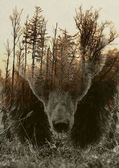 Online Shop DIY Diamond Embroidery landscape Full Square Diamond Painting Cross Stitch bear tree Pictures Of Rhinestones Mosaic Decor Ours Grizzly, Grizzly Bears, Tattoos Schulter, Bear Totem, Spirit Bear, Bear Spirit Animal, Bear Tattoos, Bear Art, Nature Tattoos