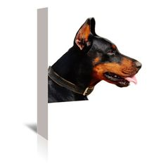 "East Urban Home Doberman Dog Pet Friend Photographic Print on Wrapped Canvas Size: 24"" H x 20"" W x 1.5"" D"