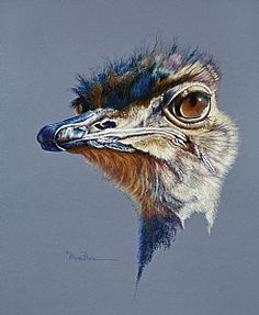 Attitude by Mary Dove Oil Pastel Painting ~ 26 x 22 Wildlife Paintings, Wildlife Art, Animal Paintings, Animal Drawings, Oil Pastel Paintings, Oil Pastel Art, Oil Pastel Drawings, Pastel Portraits, Pet Portraits