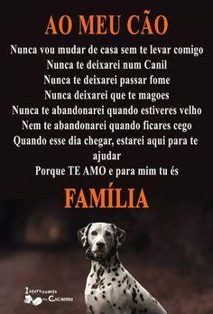 Dicas como esta é muito importante para você e seu cão. Quer conhecer mais, clique aqui agora e conheça MundoPets. Venha para o MundoPets você também. Depois do MundoPets a forma de cuidar, tratar, educar ou escolher o seu mascote vai mudar ! Clique aqui e saiba mais. #pet #petsdogs #petmeupet #meupet #meucachorro #cão #cachorro #cachorros #cuidardecachorro #cuidardomeucachorro #mundopet #mundopets Love Pet, I Love Dogs, Puppy Love, Pet Dogs, Dogs And Puppies, Dog Cat, Doggies, Animals And Pets, Cute Animals