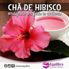 """""""#TEMNAEQUILIBRA O Hibisco é uma planta medicinal em forma de flor, originária da África. Pode ser encontrado no Brasil com nomes diferentes, como ibisco,…"""" Veja mais -> https://instagram.com/p/zTB2OxHHdh/?modal=true  #hibisco #cha #tea #hibiscus #emagrecer #cintura #chadehibisco"""