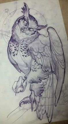 This image shows a beautiful drawing of an owl. The owl looks like it is landing on the ground. It has its claws pointed down and the head tilted to one side. Such tattoo drawings look simple but would really require a skillful artist to pull it off.