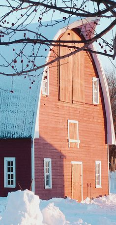 Happy and beautiful!  Light Red Barn & Snow