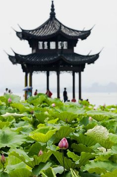 West Lake Hangzhou: Top 10 Scenes, Landmark & See Impression Show Places Around The World, Around The Worlds, Places To Travel, Places To Go, Pagoda Temple, Chinese Places, China Architecture, Chinese Garden, Great Wall Of China