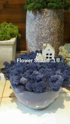 스칸디아모스 대구 대리점 > 스칸디아모스 디자인 > 스칸디아모스 샘플 및 주문 > 스칸디아모스 ... Interior Design Living Room, Living Room Decor, Bedroom Decor, Flower Studio, Sustainable Design, Indoor Garden, Design Trends, Color Schemes, Diy And Crafts