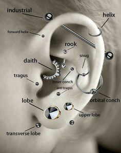A guide to some ear piercings, featuring my personal favorite Tragus and rook✨ – Marina H. A guide to some ear piercings, featuring my personal favorite Tragus and rook✨ A guide to some ear piercings, featuring my personal favorite Tragus and rook✨ Ear Piercing Diagram, Piercing Chart, Ear Piercings Chart, Ear Piercing Guide, Ear Diagram, Innenohr Piercing, Tattoo Und Piercing, Ear Piercings Tragus, Helix Piercing Jewelry