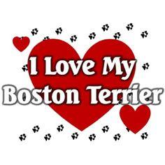 Boston (Erdinç Bakla archive)