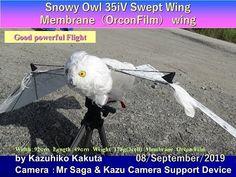 Kazuhiko Kakuta - YouTube Robot Bird, Snowy Owl, Wings, Film, Youtube, Movie, Film Stock, Cinema, Feathers