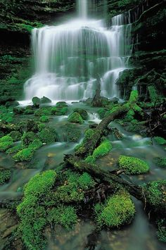 Pearly Spring, Boxley Valley, Buffalo National River, Newton, Searcy, Marion, and Baxter Counties, Arkansas