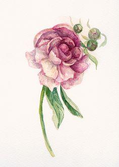 Watercolor Flowers on Behance