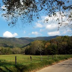 Don't forget to visit Cades Cove in the Great Smoky Mountains National Park!