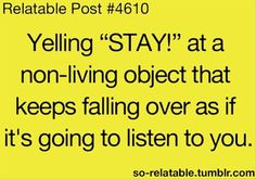 "Yelling ""STAY!"" at a non-living object that keeps falling over as if it's going to listen to you."