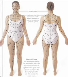 Dry Brushing to reduce cellulite: A diagram of the Lymphatic System's flow, and the direction in which you should brush. Image via  movementhealsyou.com