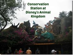 Conservation Station at Disney's Animal Kingdom - Travel with the Magic - Amy@TravelWithTheMagic.com