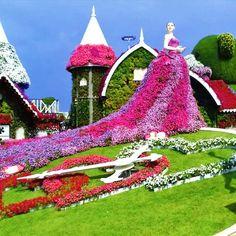 9 Season 8 Dubai Miracle Garden Ideas Miracle Garden Season 8 Dubai